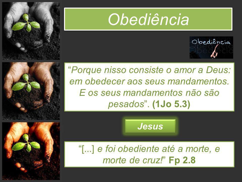 [...] e foi obediente até a morte, e morte de cruz! Fp 2.8